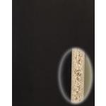 PANNEAU NOIR 59.5x240